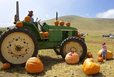 #hawaii #farm #tractor #pumpkins #harvest #halloween #thanksgiving #countryscene #farming