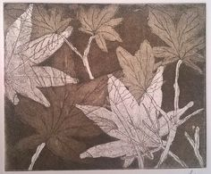 Fine Art Etching printmaking Acer Japanese Maple Leaves artwork for sale by Laura Young - MagnoliaLily