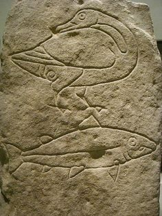Pictish carvings, Scotland -- photo by Jessica Spengler. Goose clan and Salmon clan