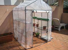 ¿Un invernadero en casa? Te decimos por qué es una gran opción Eco Garden, Garden Deco, Lawn And Garden, Indoor Garden, Garden Pots, Home And Garden, Little Gardens, Mini Greenhouse, My Secret Garden