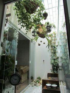 Jardim15