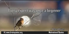 Every expert was once a beginner Quote Meaning No explanation or meaning available. Be the first to write the meaning of this quote by commenting below. Write explanation in three sentences to get it featured here. Main Topic: Motivational Quotes  Related Topics: Beginner, Expert, EveryEvery...  http://www.braintrainingtools.org/skills/every-expert-was-once-a-beginner/