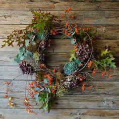 Gorgeous Autumnal Wreath - bittersweets, succulents, hydrangea