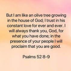 Psalms But I am like an olive tree growing in the house of God; I trust in his constant love for ever and ever. I will always thank you, God, for what you have done; Scripture Verses, Bible Verses Quotes, Bible Scriptures, Faith Quotes, Biblical Quotes, Prayer Quotes, Spiritual Quotes, Jesus Is Life, Soli Deo Gloria