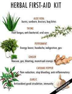 GROW YOUR OWN HERBAL FIRST-AID  KIT