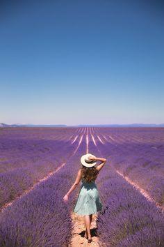 Du lịch Provence Pháp - Hành trình tìm kiếm vẻ đẹp đích thực tại nước Pháp