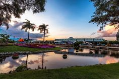 Really don't want this view to ever end #flowerandgardenfestival #monorailmonday #epcot #sunset #monorail #unforgettablehappenshere