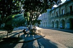 Morning light - Oaxaca, Oaxaca