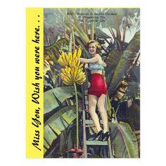 Banana Funny, Florida Images, Vintage Florida, Postcard Size, Keep It Cleaner, Paper Texture, Sunshine, Petersburg Florida, Gender