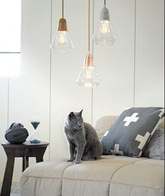 these modern drop lights in copper, silver and bronze look great...even the cat likes them