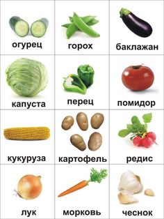 Овощи Russian Language Lessons, Russian Lessons, Russian Language Learning, Learn Russian Online, How To Speak Russian, Ukrainian Language, Vegetable Pictures, Family Day Care, Teaching Technology