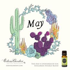 Download our free desktop calendar for May 2015! This month brough to you by Edens Garden's Invigorate Synergy Blend.  #essentialoils #edensgarden #calendar #freebie #desktop #wallpaper #cactus #succulent #illustration