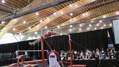 Norah Flatley - Uneven Bars - 2014 Pacific Rim Championships Event Finals Norah Flatley, Pacific Rim, Gymnastics, Finals, Olympics, Cheer, Basketball Court, Bar, Fitness