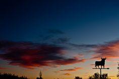 Lunes calmado con ligero positivo para un Ibex 35 que digiere las últimas caídas http://plazafinanciera.com/mercados/ibex_35/lunes-calmado-con-ligero-positivo-para-un-ibex-35-que-digiere-las-ultimas-caidas-20-04-2015/