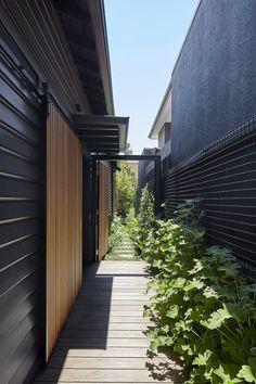Splinter Society have designed the modern interior renovation of a Californian bungalow in Melbourne, Australia. Bungalows, Indoor Outdoor Living, Outdoor Living Areas, Living Spaces, Outdoor Spaces, The Plan, Australian Architecture, Architecture Design, Original House