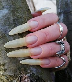 Long Natural Nails, Finger, Silver Rings, Beauty, Jewelry, Finger Nails, Jewlery, Jewerly, Fingers