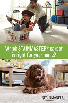 Need a little help finding the perfect carpet for your home? Well, we are here to help! Answer these 6 questions to help you pick the right flooring for your family.