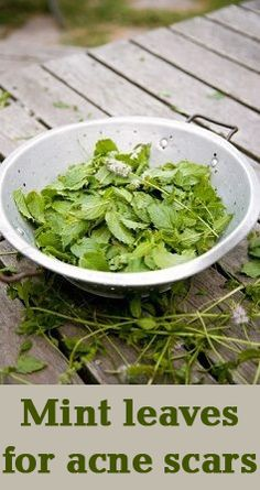 Mint Leaves Benefits for acne scars: Let us check a super duper acne curing mint recipe now.