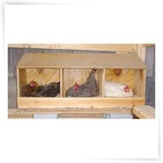 How to Build Simple Chicken Nesting Boxes