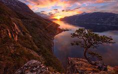 Zachód, Słońca, Rzeka, Góry, Drzewo