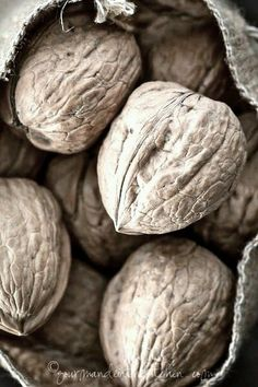 Nuts | via AŋMą'ş Wσŗℓđ at Tumblr [I'm not able to read the photographer's name, maybe someone can help me]