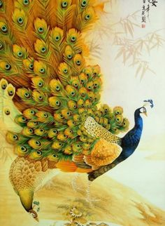 Image detail for -Most Beautiful Peacock Paintings   Digital Art, Photography