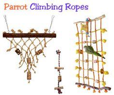 Parrot Climbing Net