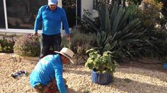 Santa Barbara Residential Organic and Synthetic Lawn Care Services Synthetic Lawn, Fall Clean Up, Pebble Beach, Lawn Care, Santa Barbara, Amazing Gardens, Organic, Youtube, Gardening