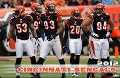 Cincinnati Bengals 2012. Can't wait for football season! <3