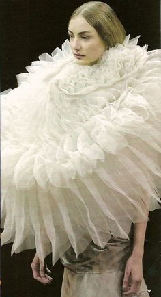 Junya Watanabe. S)  this just makes me laugh... it is like the oversized ren./victorian queen color or a petticoat wrapped around your neck...it is so silly