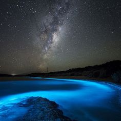 Neon Soup a bioluminescent display at a beach in Tasmania | photo by @jonathanesling by earthfocus