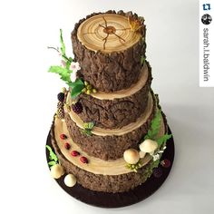 Wedding forest food tree cakes 65 Ideas for 2019 Gorgeous Cakes, Pretty Cakes, Amazing Cakes, Decoration Patisserie, Woodland Cake, Woodland Forest, Log Cake, Tree Cakes, Summer Cakes