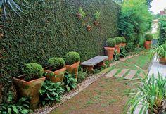 Paisagismo rico em diversidade de plantas - Paisagismo - Plantas, Flores e Jardins