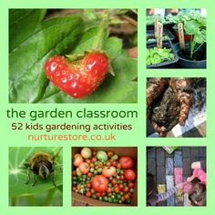 52 kids gardening activities: growing plants, science experiments, math, literacy, art, craft, play. Wonderful ideas for outdoor play and learning.