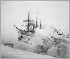 The most famous ship in early Arctic history is undoubtedly the Revenue Cutter Bear. The ship's first work was in the sealing trade and after it was rebuilt ...