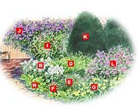 No-Mow Backyard Garden Plan