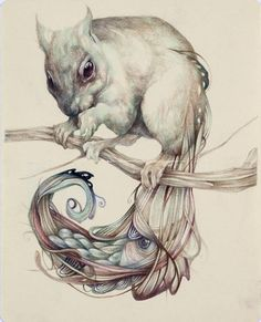 Marco Mazzoni.  Technically brilliant, Mazzoni has rejected all advice to relinquish the pencil in favour of oil paints and has continued his mastery of the modest medium of the coloured pencil. He utilises a complex chiaroscurist style of juxtaposing light against dark, to create intense depth and brilliant light. This, combined with his imaginative composition, offers the viewer one of the most colourfully opulent, detailed and intense visual feasts to be had.