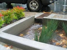 Bioswales filter stormwater in Portland, OR. Click image for many more examples and visit the Slow Ottawa 'Stormwater Solutions' board for more sustainable water management. Green Street, Portland City, Portland Oregon, Urban Landscape, Landscape Design, Water Management, Rain Garden, Water Element, Urban Planning