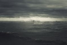 """""""This storm is you. Something inside of you. So all you can do is give in to it, step right inside the storm, closing your eyes and plugging up your ears so the sand doesn't get in, and walk through it, step by step.""""  ― Haruki Murakami, Kafka on the Shore"""