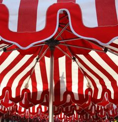 Red and White Photograph  - Red and White Fine Art Print
