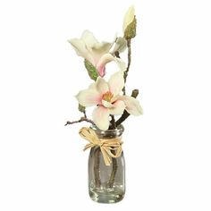 43461-05 Glass Vase, Nature, Home Decor, Plant, Magnolias, Naturaleza, Decoration Home, Room Decor, Nature Illustration