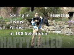 Spring in meine Arme in 100 Sekunden! Hundetrick - Australian Shepherd - Clickertraining - Tutorial - YouTube