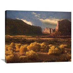 Camel Butte Rising Out Of Desert, Monument Valley, Arizona By Tim Fitzharris, 28 X 35-Inch Wall Art