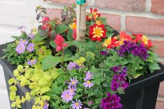 Summer container garden.  garden-stories.com