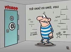 Funny Memes, Jokes, Humor, Ted, Haha, Family Guy, Guys, Fictional Characters, Humour