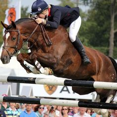 Bareback Jumping  yowza  i always considered myself a good rider but bareback jumping like this dont think i could do
