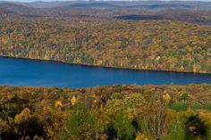 10. Ramapo Mountain State Forest, Ringwood