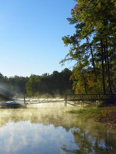 Morning Fog On The Lake by Lisa Wooton  photography photograph nature