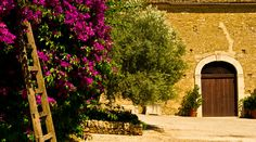 Valle Dell'Acate » Storia