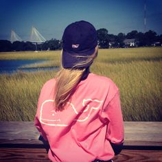 Southern style vineyard vines